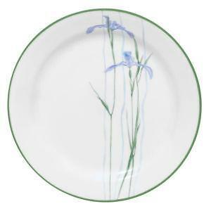 Corelle Enhancements Dinner Plate  sc 1 st  eBay : corningware dinner plates - pezcame.com