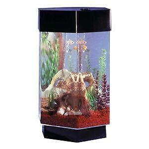 hexagon fish tanks