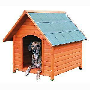 extra large outdoor dog house