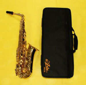 Alto Saxophone Brand New, Perfect for School Band!