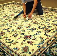 ☻☺☼ Experienced Area Rug Cleaner ☼☺☻