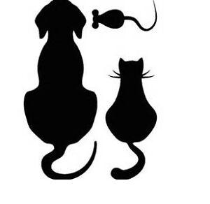 Pet Sitting Plus :)  !!!  :)
