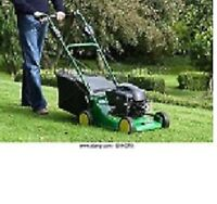 MOWING/ GENERAL CLEANUP/OVERGROWN WEEDS! AFFORDABLE GREAT SERVIC