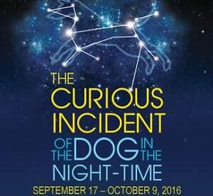 GOLD SECTION!! Curious Incident Of TheDog In The Night Time
