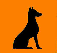 Dog behaviourist - Behaviour problem specialist