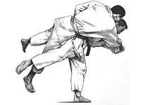 Jiu Jutsu / Martial Arts / Self defence classes
