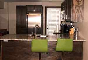 FULLY Renovated, Downtown, 2 Bedroom Unit, Parking, Storage! Kingston Kingston Area image 2