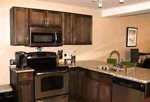 FULLY Renovated, Downtown, 2 Bedroom Unit, Parking, Storage! Kingston Kingston Area image 4