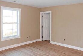 Painter , Handyman (laminate flooring)