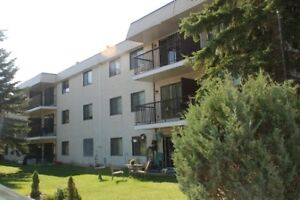 Essex House Lacombe - live next to the Park - 1st 2 weeks FREE