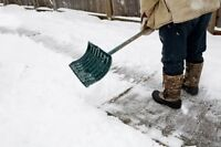 Residential Professional Snow Removal Services