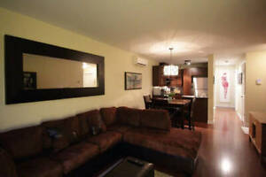 Summer sublet 1 room in 2br apartment (All furnished)