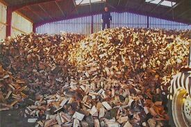 Dry fire wood