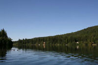 0.99 Acres Waterfront Lake Front Cabin Cottage
