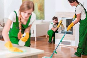 Cleaning in best price 6479362737 great quality job