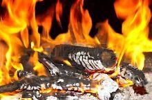 Firewood iron bark hot burning Greenbank Logan Area Preview