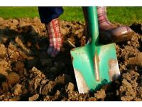 Free Garden Soil - Loaded and on Pallets for Collection