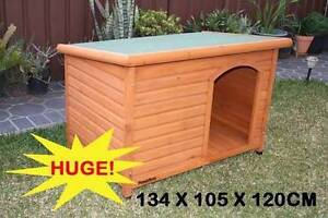 EXtra Large Dog Kennel Ashmore Gold Coast City Preview