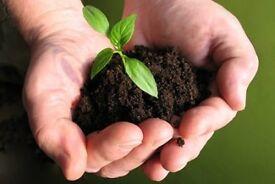 Topsoil, Sand, Bark, Compost