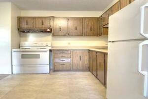 Spacious & Beautiful Suites Available Now! Kitchener / Waterloo Kitchener Area image 9