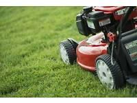 Garden maintenance, cuts from £10