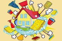 Experience house cleaning