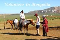 Help running a summer camp for children in Mongolia