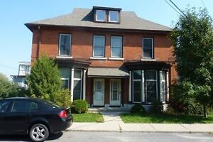 New Price! Multi-level 2 Bedroom, Renovated, Historic, Downtown