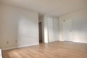 Spacious & Beautiful Suites Available Now! One Month Free Kitchener / Waterloo Kitchener Area image 6