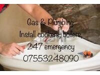 Plumber Bathroom Cooker Radiator Gas Install Tap Wc Toilet Sink Combi Boiler Leak Block Unblock