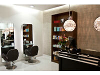 Salon Assistant / Apprentice required for hair salon in Wandsworth Common sw17, London