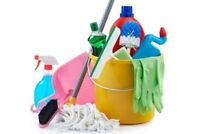 Cleaning  Lady available in the North York Area