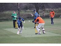 Paid umpires wanted for new T20 cricket league!