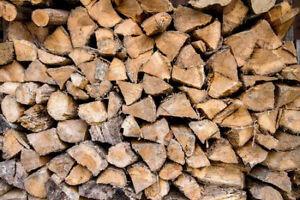 unseasoned 30 bush cords cut & spit mixed hardwood