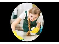 Devine Cleancare: Domestic cleaning /Housekeeper, Office and all commercial cleaning Cardiff - Wales