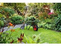 Affordable and reliable Gardener to customer satisfaction