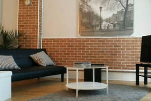 Large One Bed Apartment Downtown Hamilton