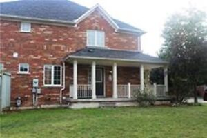 Full House for Lease in Scarborough