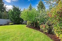 Landscaping & Lawn Care