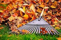 ***FALL LEAF CLEAN-UP***