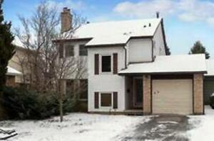 Beautiful Detached 4 Bedroom House In The Basement Apartment!