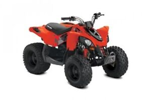 2019 Can-Am DS 90-4ST