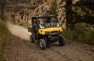 2016 Can-Am Defender DPS™ HD10 London Ontario image 3