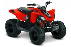 2018 Can-Am DS 90™