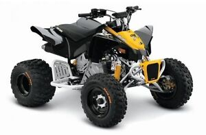 2015 Can-Am DS 90 X
