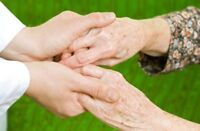 Senior Visiting and Companionship