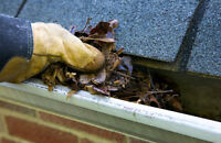 Cheapest rate for Eavestrough cleaning/repair's in Winnipeg