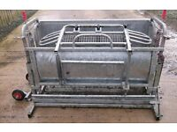 Wanted Sheep Turnover Crate