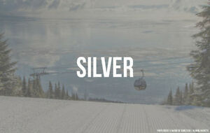 Ski Pass for Blue Mountain, Mount St.Louis and others - Silver