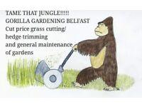 Gorilla gardening belfast